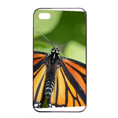 Butterfly 3 Apple Iphone 4/4s Seamless Case (black) by timelessartoncanvas