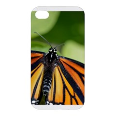Butterfly 3 Apple Iphone 4/4s Hardshell Case by timelessartoncanvas