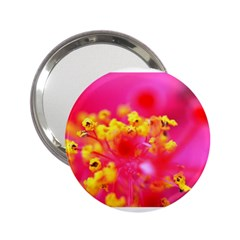 Bright Pink Hibiscus 2 25  Handbag Mirrors by timelessartoncanvas