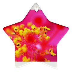 Bright Pink Hibiscus Star Ornament (two Sides)