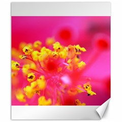 Bright Pink Hibiscus Canvas 20  X 24   by timelessartoncanvas