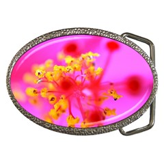 Bright Pink Hibiscus 2 Belt Buckles by timelessartoncanvas