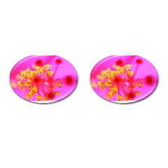 Bright Pink Hibiscus 2 Cufflinks (oval) by timelessartoncanvas