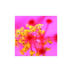 Bright Pink Hibiscus 2 Shower Curtain 48  X 72  (small)