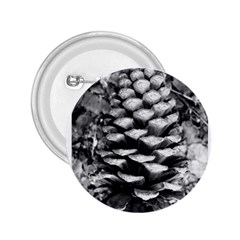 Pinecone Spiral 2 25  Buttons