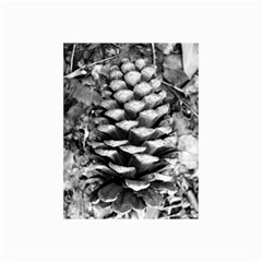 Pinecone Spiral Collage 12  X 18  by timelessartoncanvas