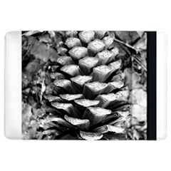 Pinecone Spiral Ipad Air 2 Flip by timelessartoncanvas