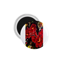 Red Orchids 1 75  Magnets by timelessartoncanvas