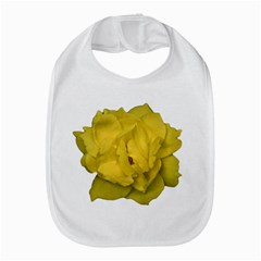 Isolated Yellow Rose Photo Bib by dflcprints