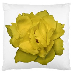 Isolated Yellow Rose Photo Standard Flano Cushion Cases (one Side)  by dflcprints