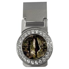 A Deeper Look Money Clips (cz)  by InsanityExpressedSuperStore