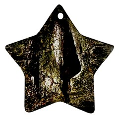 A Deeper Look Star Ornament (two Sides)  by InsanityExpressedSuperStore