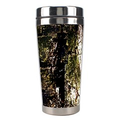 A Deeper Look Stainless Steel Travel Tumblers