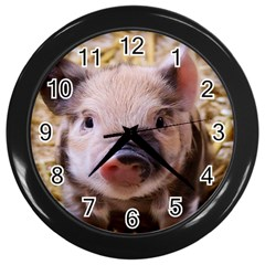 Sweet Piglet Wall Clocks (black)