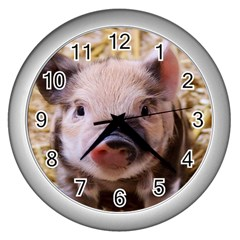 Sweet Piglet Wall Clocks (silver)