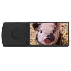 Sweet Piglet Usb Flash Drive Rectangular (4 Gb)