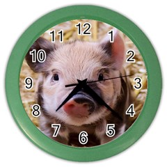 Sweet Piglet Color Wall Clocks