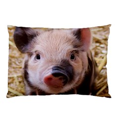 Sweet Piglet Pillow Cases