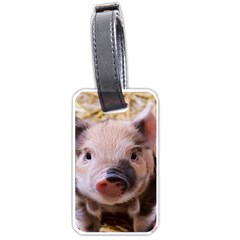 Sweet Piglet Luggage Tags (two Sides)