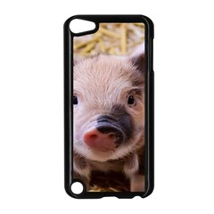 Sweet Piglet Apple Ipod Touch 5 Case (black)