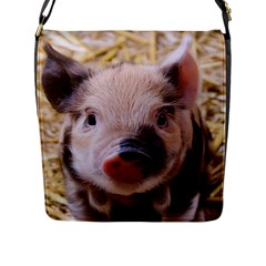 Sweet Piglet Flap Messenger Bag (l)  by ImpressiveMoments