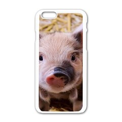 Sweet Piglet Apple Iphone 6 White Enamel Case by ImpressiveMoments