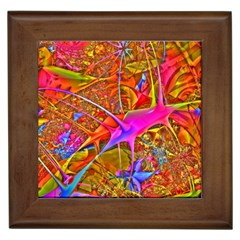 Biology 101 Abstract Framed Tiles by TheWowFactor