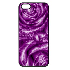Gorgeous Roses,purple  Apple Iphone 5 Seamless Case (black)