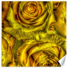 Gorgeous Roses, Yellow  Canvas 16  X 16