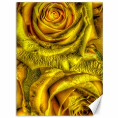 Gorgeous Roses, Yellow  Canvas 36  X 48