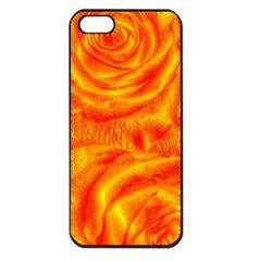 Gorgeous Roses, Orange Apple Iphone 5 Seamless Case (black) by MoreColorsinLife