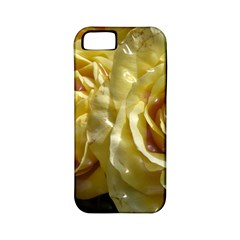 Yellow Roses Apple Iphone 5 Classic Hardshell Case (pc+silicone)