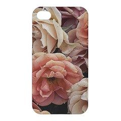 Great Garden Roses, Vintage Look  Apple Iphone 4/4s Premium Hardshell Case