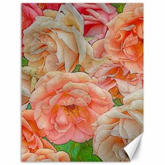 Great Garden Roses, Orange Canvas 12  X 16