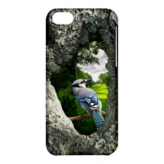Bird In The Tree  Apple Iphone 5c Hardshell Case by infloence