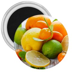 Citrus Fruits 3  Magnets by emkurr