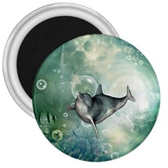 Funny Dswimming Dolphin 3  Magnets