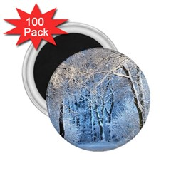 Another Winter Wonderland 1 2 25  Magnets (100 Pack)  by MoreColorsinLife