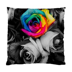 Blach,white Splash Roses Standard Cushion Cases (two Sides)