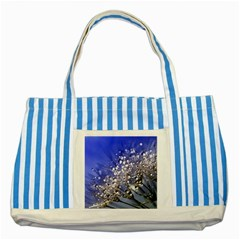 Dandelion 2015 0704 Striped Blue Tote Bag  by JAMFoto