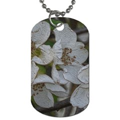Amazing Garden Flowers 32 Dog Tag (two Sides) by MoreColorsinLife