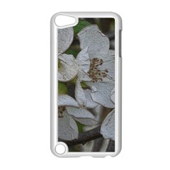 Amazing Garden Flowers 32 Apple Ipod Touch 5 Case (white)