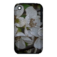 Amazing Garden Flowers 32 Apple Iphone 3g/3gs Hardshell Case (pc+silicone)