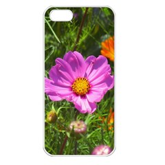 Amazing Garden Flowers 24 Apple Iphone 5 Seamless Case (white)