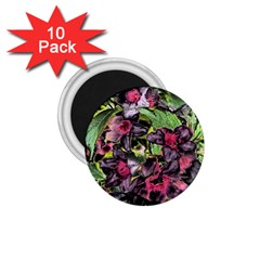 Amazing Garden Flowers 33 1 75  Magnets (10 Pack)  by MoreColorsinLife