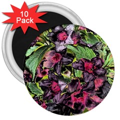 Amazing Garden Flowers 33 3  Magnets (10 Pack)