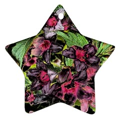 Amazing Garden Flowers 33 Star Ornament (two Sides)