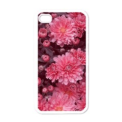 Awesome Flowers Red Apple Iphone 4 Case (white)
