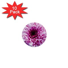 Wonderful Flowers 1  Mini Buttons (10 Pack)  by MoreColorsinLife