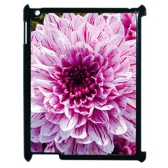 Wonderful Flowers Apple Ipad 2 Case (black) by MoreColorsinLife